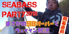 SEABASS PARTY
